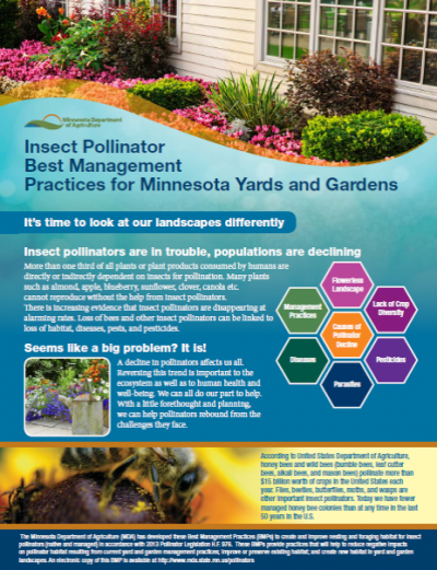 Insect Pollinator Best Management Practices (Minnesota)