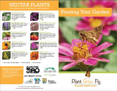 Plant Grow Fly: Planting Your Garden Brochure