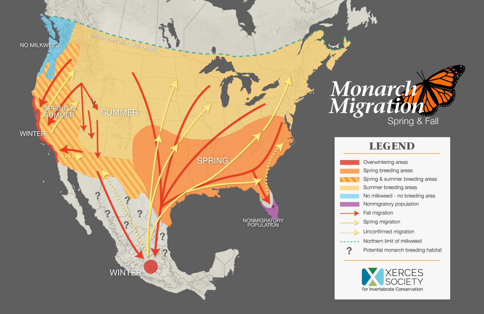 Monarch Migration Spring And Fall