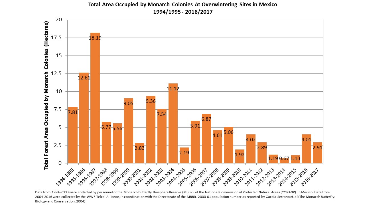 Graph of the total area occupied by monarch butterflies in the Mexican overwintering grounds.