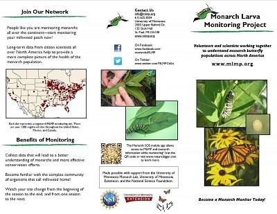 Monarch Larva Monitoring Project Brochures