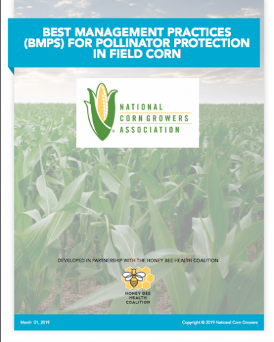 BEST MANAGEMENT PRACTICES (BMPS) FOR POLLINATOR PROTECTION IN FIELD CORN