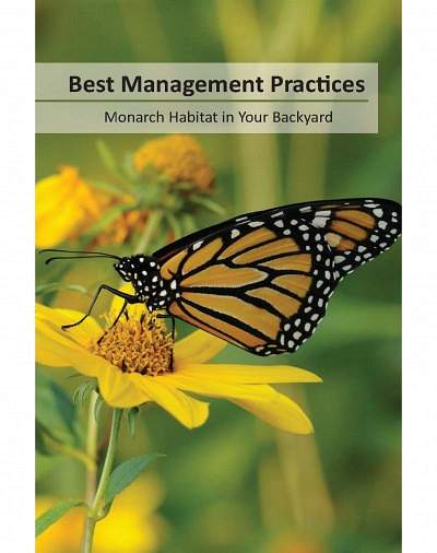Best Management Practices for Monarch Habitat in Your Backyard