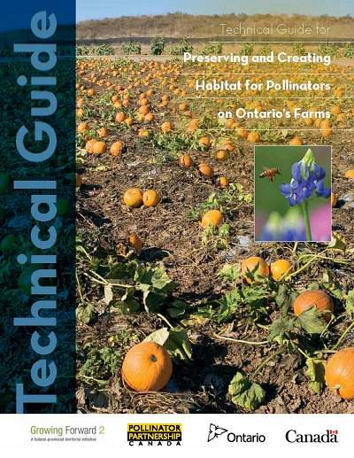 Technical Guide: Preserving and Creating Pollinator Habitat on Ontario's Farms
