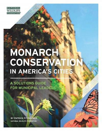Monarch Conservation in America's Cities