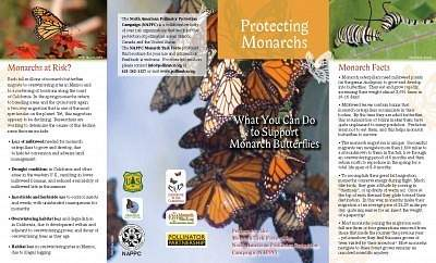 Protecting Monarchs Brochure