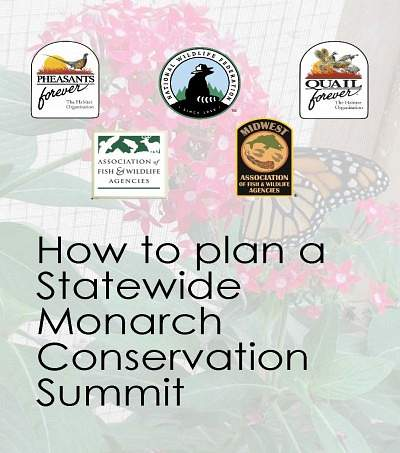 How to plan a Statewide  Monarch Conservation Summit