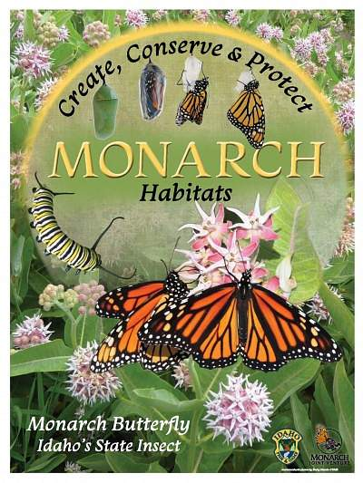 Create, Conserve & Protect Monarch Habitats Poster