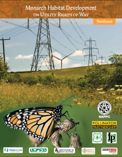 Monarch Habitat Development on Utility Rights-of-Way