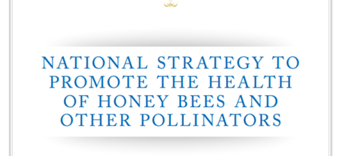 White House Pollinator Strategy Announced