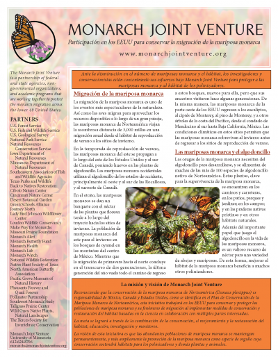 MJV Fact Sheet (Spanish)